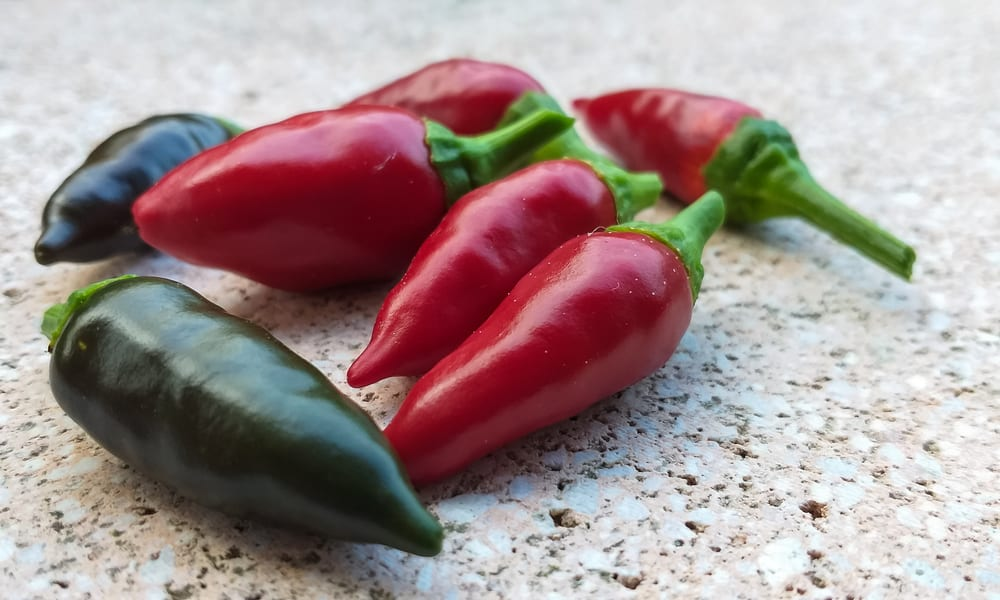 Calabrian Chiles