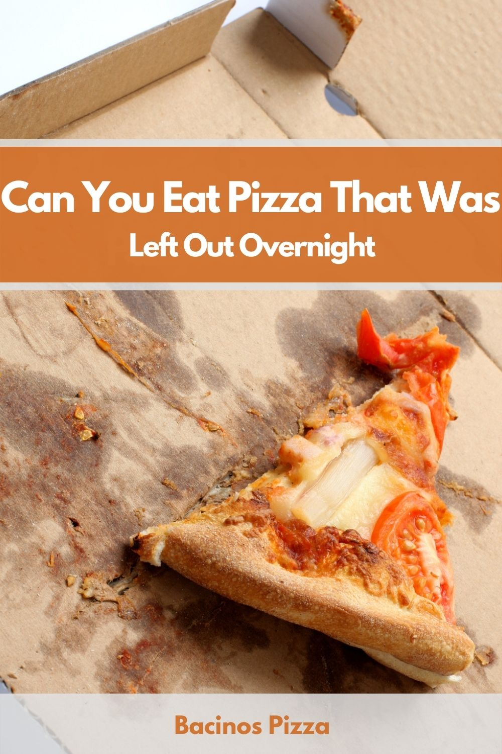 Can You Eat Pizza That Was Left Out Overnight pin 2